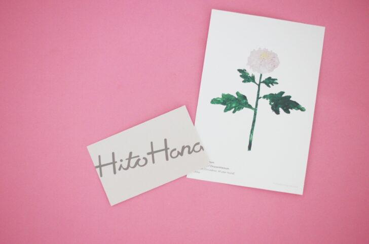 花の定期便【Hitohanaひとはな】クーポンで半額に!口コミと退会・解約の注意点も